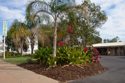 accommodation charleville motel waltzing matilda
